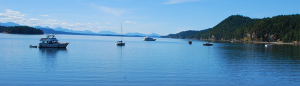 5 tips for snorkeling on your Vancouver yacht charter