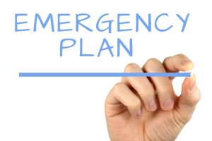 Check emergency plans with professionals to ensure that any previously made plans were still valid and robust.