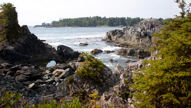 The famous Hot Springs Cove is found in Maquinna Provincial Park on Vancouver Island at the north of Clayoquot Sound.