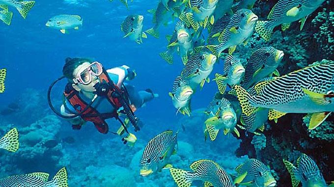 hero-thailand-scuba-diving_0